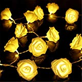 VIPMOON 2M 20LED String Lights Bright Warm Rose Flower Lamp Fairy Light Wedding Gardens Party Christmas Decoration - Warm White