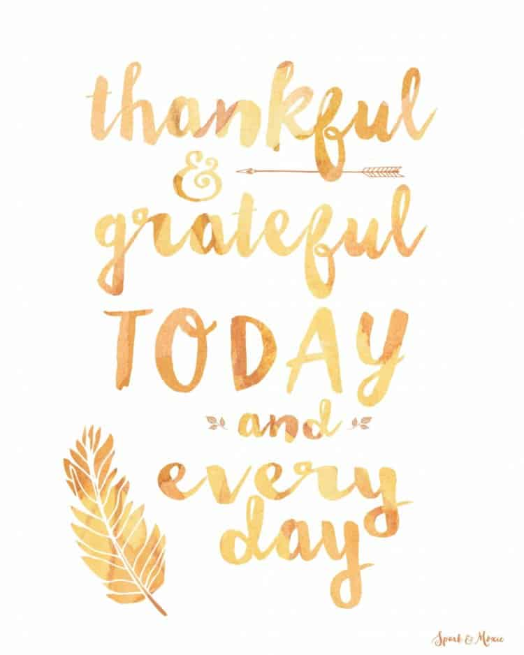 Happy Thanksgiving to all my American friends. ✨✨✨ #